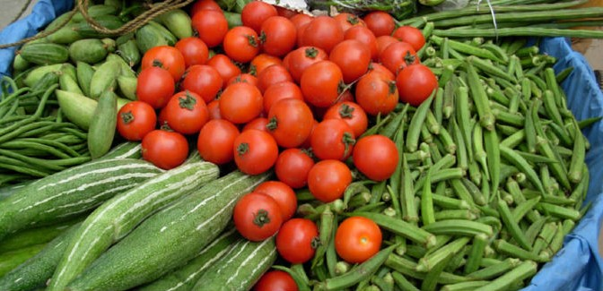 Top 10 High Producing Vegetables for Year Round Yield